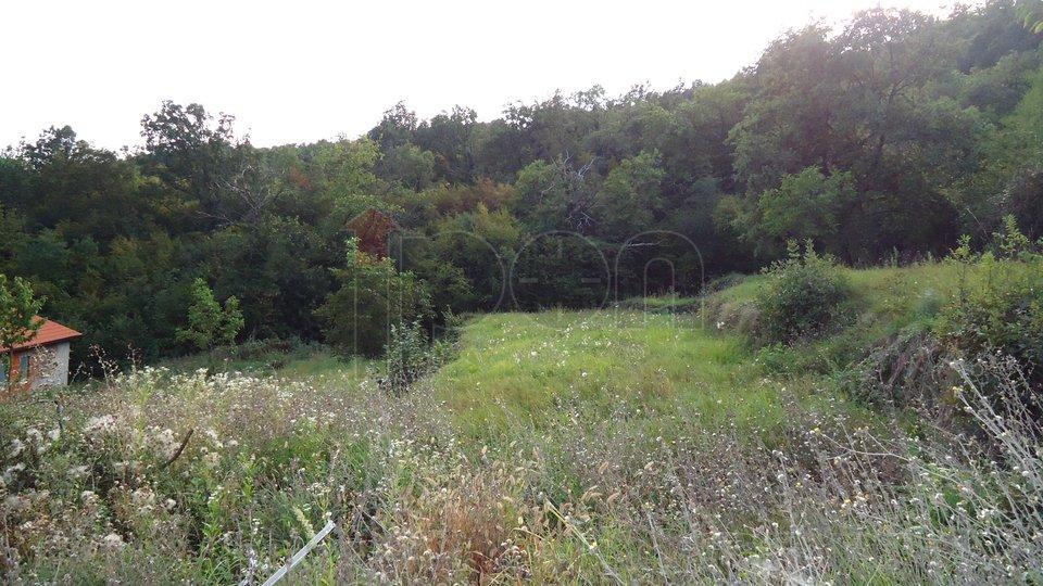 Land, 729 m2, For Sale, Bregi