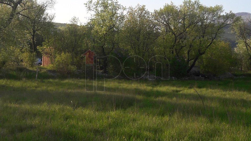 Dražice, građevinsko zemljište za obiteljsku kuću