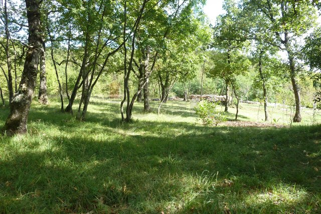 Land, 1259 m2, For Sale, Rijeka - Gornja Drenova