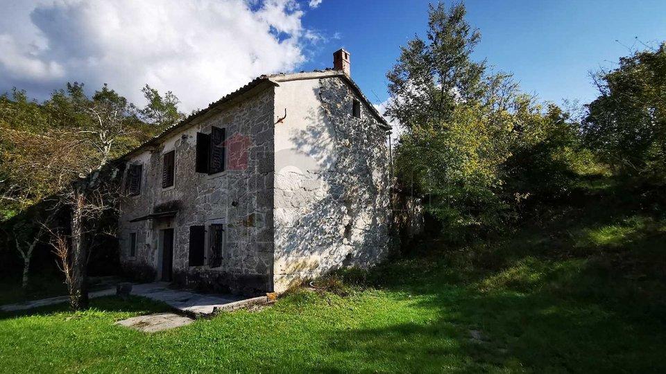 Buzet, Roč, predivna autohtona kamena kuća na prodaju, useljiva, pogobna za bavljenje turizmom!