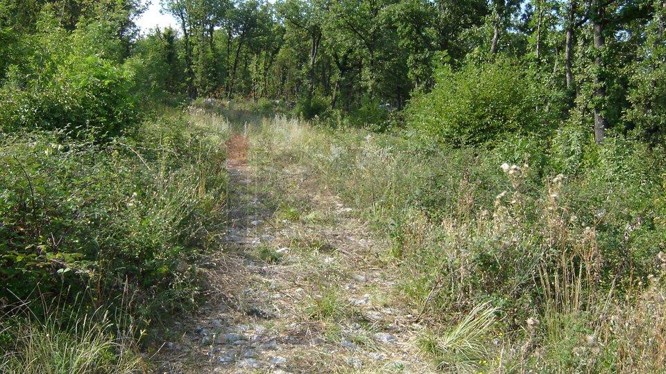 Land, 710 m2, For Sale, Kastav