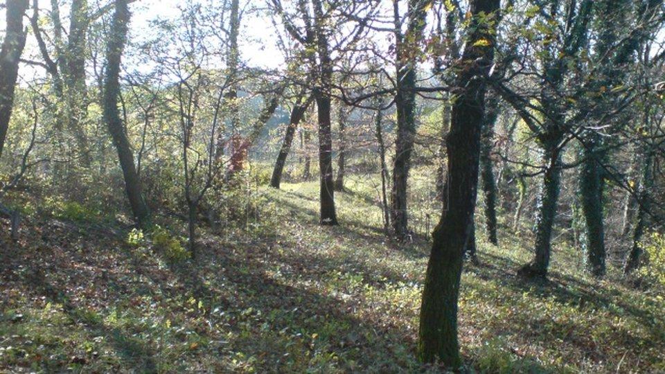 Land, 1724 m2, For Sale, Čavle