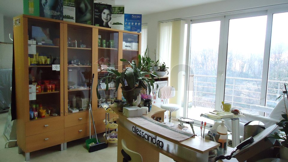 House, 1212 m2, For Sale, Kastav