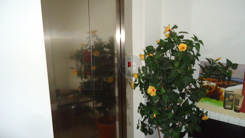 House, 1212 m2, For Sale, Kastav